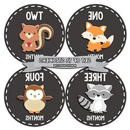 Months In Motion - Baby Month Stickers - Monthly Baby Sticke